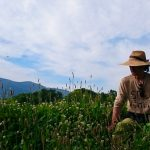 第5話|秋元哲也 ニセコ蒼麻芽農園