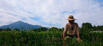 第5話|秋元哲也 自然栽培ニセコ蒼麻芽農園