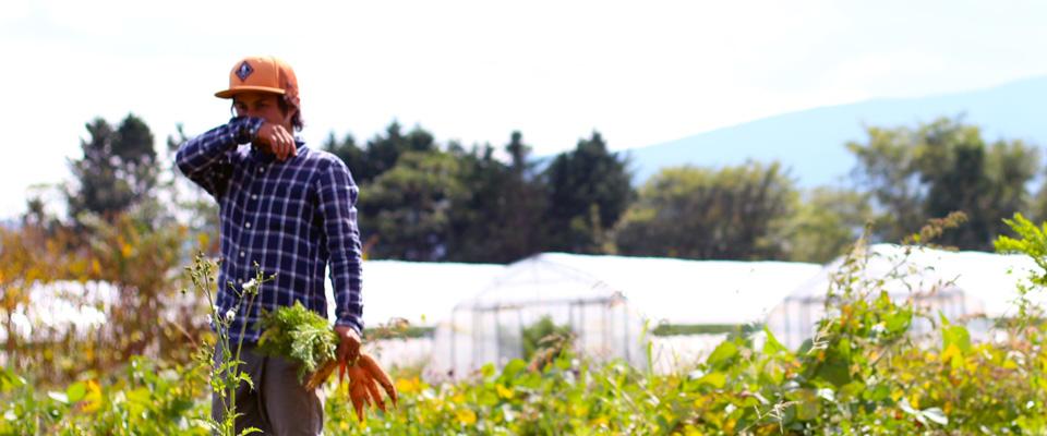 あ!農家になりたい