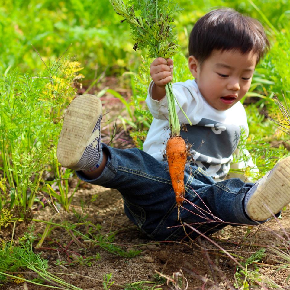 土に触れる本田ヒロト君(2歳)